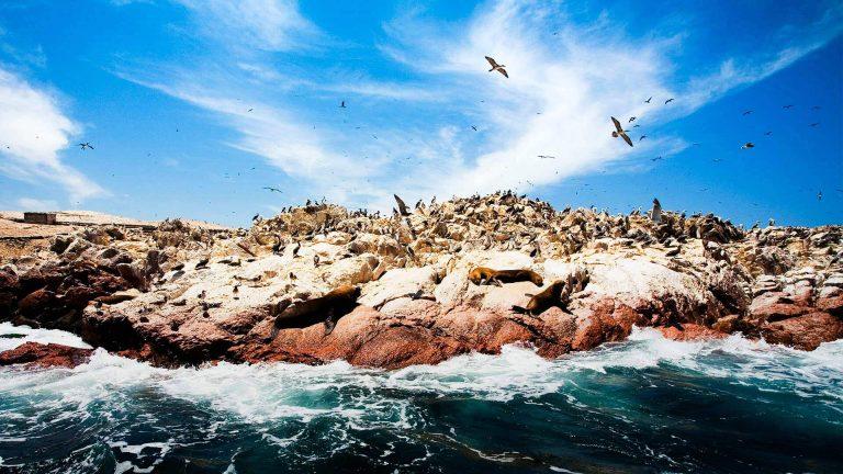 Clima por temporada en Paracas