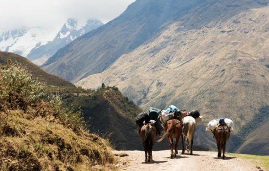 Foto destacada de Paseo a caballo en Cusco