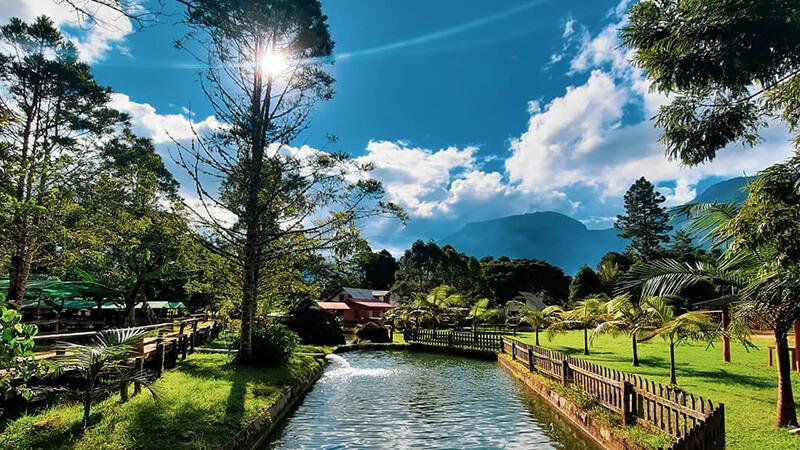 Lugares que debes visitar en Oxapampa